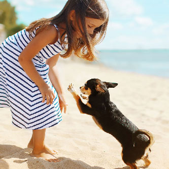 Use EFT Pet Loss